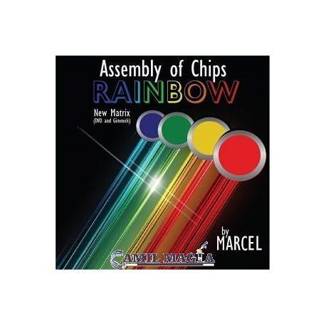 Asamblea de Colores (DVD y Fichas) por Marcel